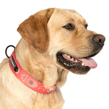Schönes Hundehalsband im lachs Aztek Design von HAVNBERG