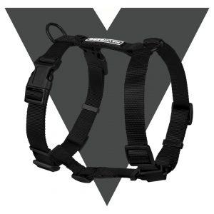 Komplett schwarzes Hundegeschirr