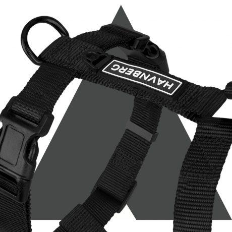 Hundegeschirr schwarz mit Hintergrund III