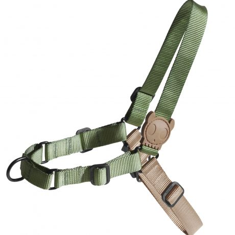 forest_soft-walk_harness – 187